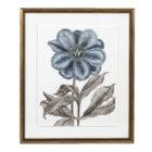 Azure Botanicals 6